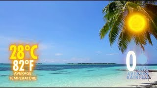 Download Maldives Weather - When is the best time to travel to the Maldives? Video