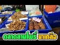 Download โคตรสด! กุ้ง หอย ปู ปลา อาหารทะเล ที่ตลาดลานโพธิ์ นาเกลือ พัทยา Video
