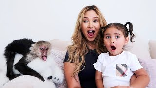 Download SURPRISING ELLE WITH A PET MONKEY!!! Video