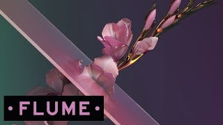 Download Flume - Never Be Like You feat. Kai Video