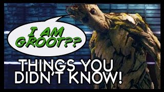 Download 7 Things You Didn't Know (Yet!) about Guardians of the Galaxy! Video