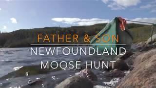 Download 2017 Father & Son Newfoundland moose hunt Video