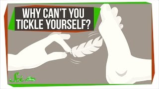 Download Why can't you tickle yourself? Video