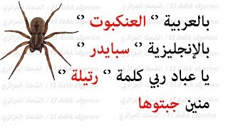 Download نكت جزائرية مضحكة جدا (19) Blagues algeriénnes Video