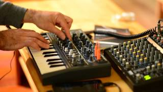 Download Arturia MicroBrute Phatty Bass Analog Synth Demo Video