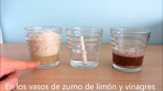 Download Experimento casero: tiza, limón y vinagre. Lluvia ácida Video
