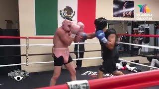 Download Canelo Recibe Fuertes Golpes En Sparring Para Su Combate Con Golovkin Video
