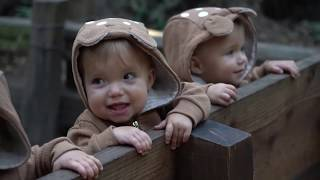Download LOST OUR BABY IN THE REDWOOD FOREST **not clickbait** Video