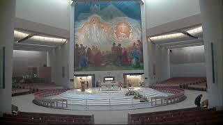 Download Knock Shrine Live Stream Video