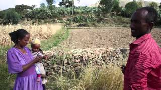 Download Rural Roads in Ethiopia Video