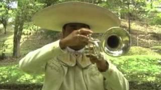Download Mas Alla de las Estrellas - LUIS ALBERTO VALLEJO.wmv Video
