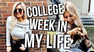 Download college week in my life: classes, frat party, my big! Video