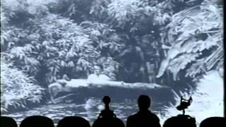 Download MST3k 315 - Teenage Caveman Video