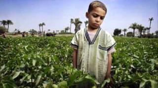 Download ″..a sensible video .. about CHILD LABOUR″ Video