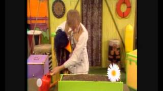 Download Rod Hull And Emu - How To Make A Windowbox Video