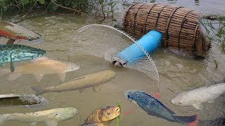 Download Creative Girl Make Fish Trap Using PVC - Fan Guard - Bamboo To Catch A Lot of Fish # Part 2 Video