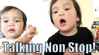 Download Talking Non-Stop! - March 18, 2016 - ItsJudysLife Vlogs Video