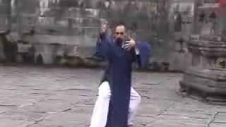 Download Wudang Longform at Nan Yan Temple Video