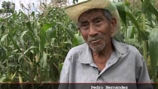 Download El Salvador 28 años después. Video