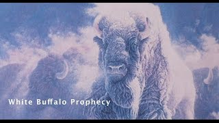 Download White Buffalo Prophecy Video