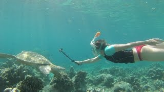 Download GoPro Snorkel Sipadan Video