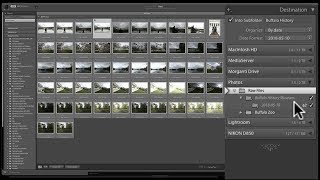 Download Mastering Lightroom Classic CC - 2: Importing Video