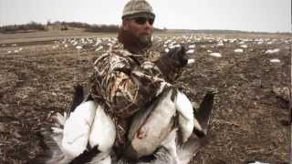 Download Snow Goose and Speck Hunting in Southern Illinois: Fowled Reality EP5 Video