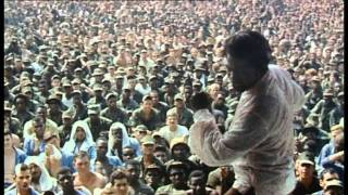Download Soul Survivor - The James Brown Story Video