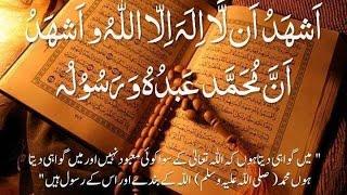 Download Molvi Muhammad Umar Baloch(Kalma E Tauheed) Video