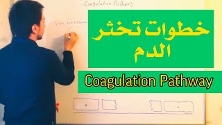 Download Hematology Coagulation made easy عملية تخثر الدم Video