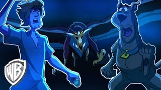 Download Scooby-Doo! en Español Latino America | El Banquete Mágico | WB Kids Video