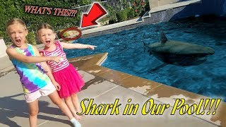 Download Monster in Our Pool! Shark Attack on Dad Prank!!! (Hidden Eggs NOT Found) Video