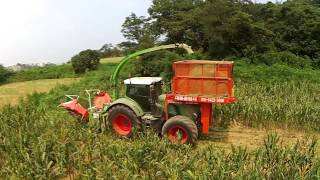 Download Maize Harvesting with fendt 930, lacotec, kemper and phantom 3(펜트 930 옥수수 사일리지) Video