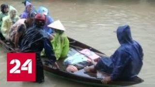 Download ″Погода 24″: ″Дамри″ разбушевался перед саммитом АТЭС - Россия 24 Video