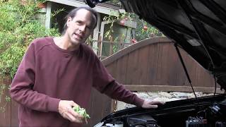 Download How To Clean An Engine Video