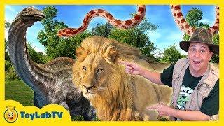 Download DINOSAUR CAPTURED! Animal Adventure Park Family Fun Zoo Trip, Children's Outdoor Activities for Kids Video