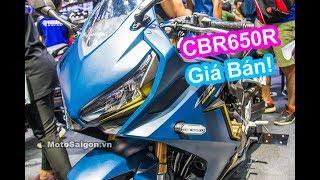 Download Giá xe Honda CBR650R 2019 màu sắc so với CBR1000RR CB650R Video