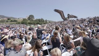 Download Pelicans crash Pepperdine University graduation Video