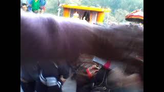 Download Badubada Devta Milan at ″Darlaghat″ Himachal Pradesh Video