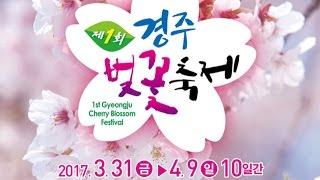 Download 제1회 경주벚꽃축제 개막식 Video