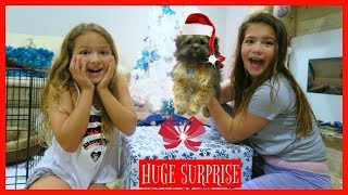 Download OPENING EARLY CHRISTMAS PRESENT / A NEW PUPPY / AMAZING SURPRISE ″SISTER FOREVER″ Video
