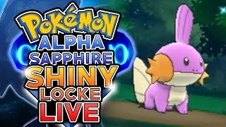 Download LIVE SHINY MUDKIP SOFT RESETTING! Pokemon Alpha Sapphire ShinyLocke Shiny Hunting w/ HDvee Video