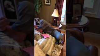 Download Mourning Father Welcomes New Dog Into Family Video