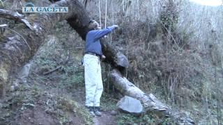 Download Aburrido del pueblo, decidió vivir en una cueva en las montañas de San Pedro de Colalao Video
