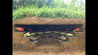 Download Primitive technology : Build the most beautiful underground refrigerator | build a refrigerator Video