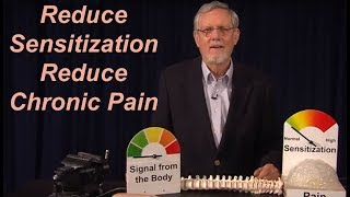 Download How to Overcome Chronic Pain 1. Demonstration Video