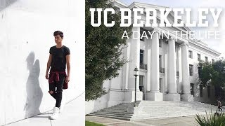 Download A DAY IN MY LIFE | UC Berkeley Student Vlog Video
