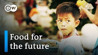 Download Indonesia: food for the future - Founders Valley (6/10) | DW Documentary Video