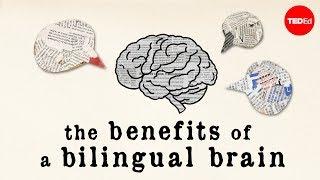 Download The benefits of a bilingual brain - Mia Nacamulli Video