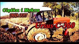 Download Ciężka i Mokra Orka 2017 Ursus C-360 Video